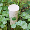 4 oz 6 oz Biodegradable Customized Disposable Paper Cup