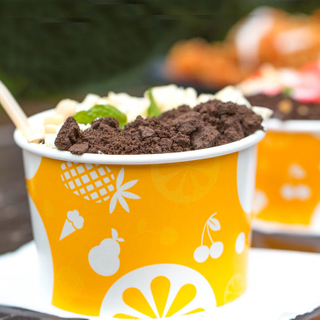 hight quality a disposable bowl ice cream pint soup containers
